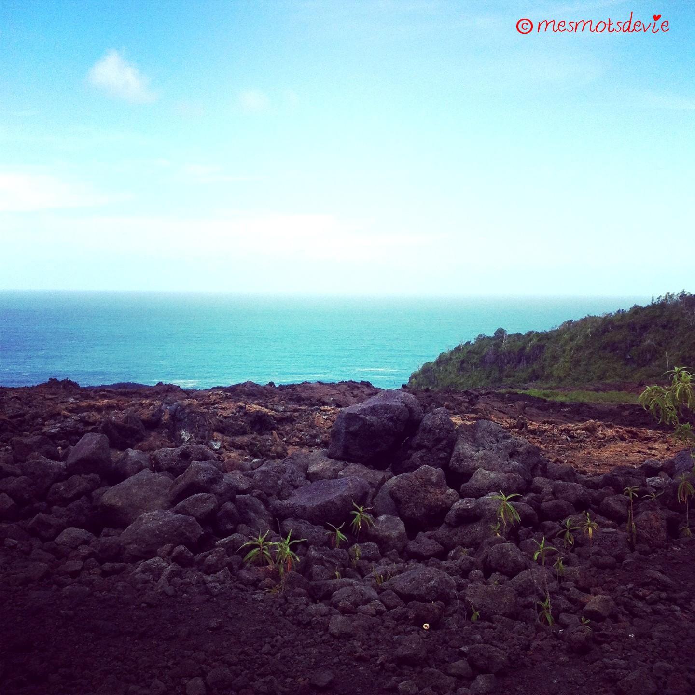 «Mes mots de vie» chante la Réunion…